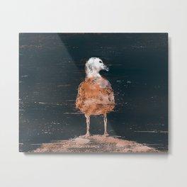 Pidgeon Pointer Metal Print