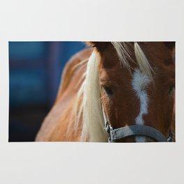 Renaissance Pony - Sorrel Blue Rug