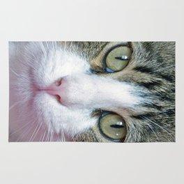 Pink Nose Rug