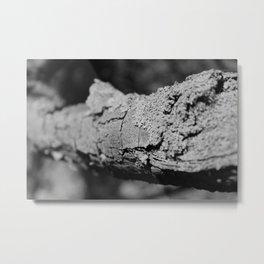 Close up Bark Metal Print