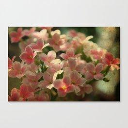 Cute Flowers Canvas Print