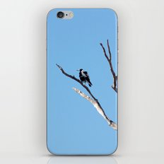 The Magpie that Comes and Goes iPhone & iPod Skin