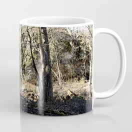 Alone in Secret Hollow with the Caves, Cascades, and Critters - First Glimpse of the Falls Coffee Mug