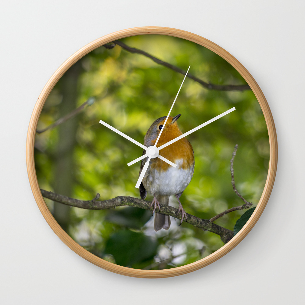 Redbreast. Wall Clock by Angelaairdphotography (CLK7976473) photo