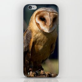 Dusk Dark Breasted Barn Owl iPhone Skin