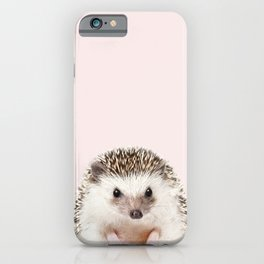 Baby Hedgehog With Pink Background, Baby Animals Art Print By Synplus iPhone Case