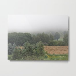 The fog in the field Metal Print