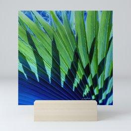 Palm Shadows Mini Art Print