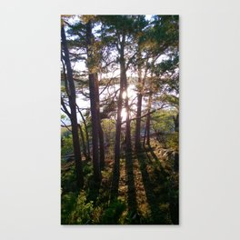 See-through Canvas Print