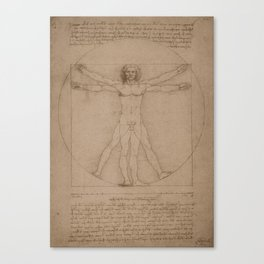 Vitruvian Man -- Leonardo da Vinci Canvas Print