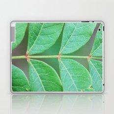 Stem Laptop & iPad Skin