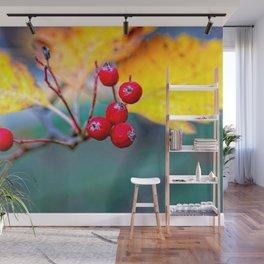 Stylish Hawthorn Berries In Autumn Wall Mural