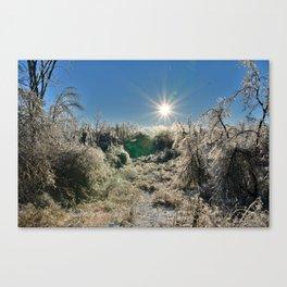 Ice Coliseum Canvas Print