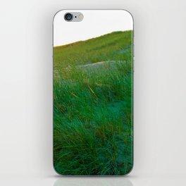 Sunrise on Dunegrass iPhone Skin