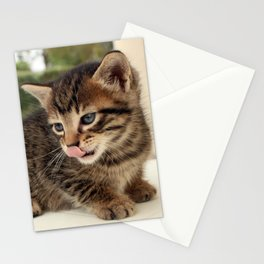 Lick It! Stationery Cards