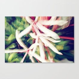 ABSTRACT LILY Canvas Print