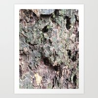 Abstracts in Nature Series -- Redwood Bark Art Print