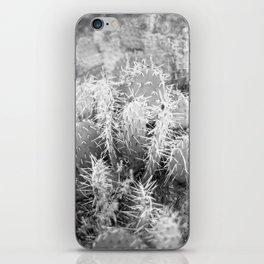Vintage Desert Cactus  iPhone Skin
