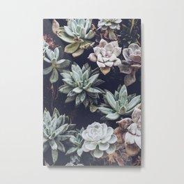 succulents iii Metal Print