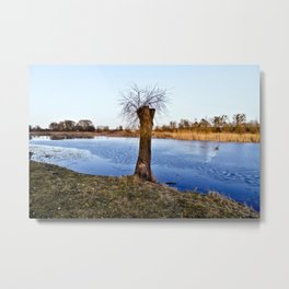MAGIC NATURE RESERVE Metal Print