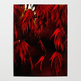 RED, RED AUTUMN Poster