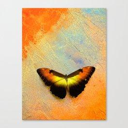 Golden Morpho Canvas Print
