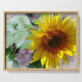 sunflower glow Serving Tray