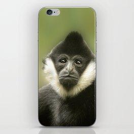 Colobus Monkey iPhone Skin