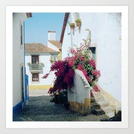 Portugal, Obidos (RR 185) Analog 6x6 odak Ektar 100 Art Print