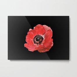 Flower_17 Metal Print