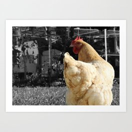 Another Dramatic Chicken Art Print