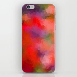 Rainbow Soup iPhone Skin