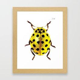 Insecte jaune et noir colors fashion Jacob's Paris Framed Art Print
