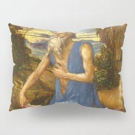 Saint Jerome in the Wilderness by Albrecht Dürer Pillow Sham