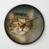 maine Wall Clocks featuring Maine Coon by Pauline Fowler ( Polly470 )
