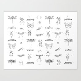 Bugs and insects Art Print