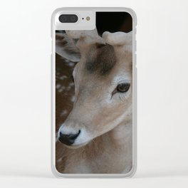 Young deer, portrait Clear iPhone Case