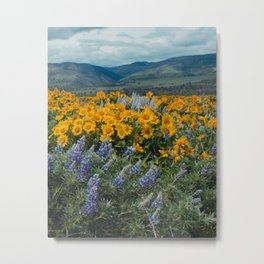 Oregon Spring Wildflower Hillside Metal Print