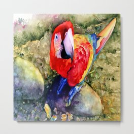 Macaw on a Rock Metal Print
