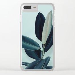 Ficus elastica - mint Clear iPhone Case