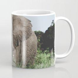 Ngorongoro Crater, Tanzania II Coffee Mug