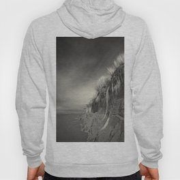 The Rapunzel Experience Hoody