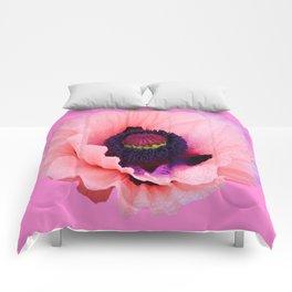 PURPLE  POPPY FLOWER  VIGNETTE Comforters