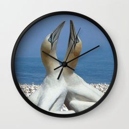 Northern Gannets in love Wall Clock