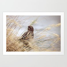 Be as a Bird Art Print
