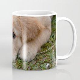 Very Cute Dog Coffee Mug