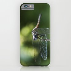 Fly, Dragon, Fly Slim Case iPhone 6s