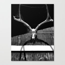 Bone Dancer Canvas Print
