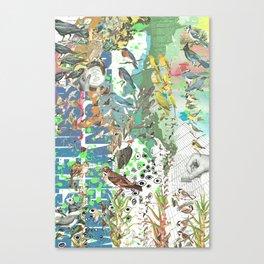Bird Grid Paste Up 2 Canvas Print