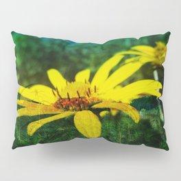 Juxtaposed Prairie Pillow Sham